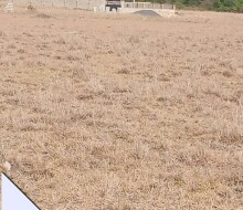 well-fenced-and-gated-community-lands-for-sale-at-tsopoli-small-1