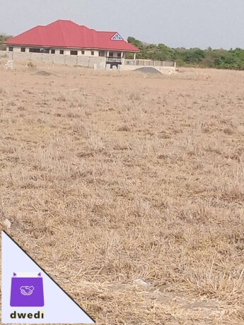 well-fenced-and-gated-community-lands-for-sale-at-tsopoli-big-1