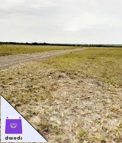good-new-airport-residential-lands-for-sale-tsopoli-big-1