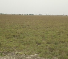 invest-in-secured-area-land-small-1