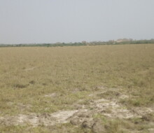 available-demarcated-plots-small-0