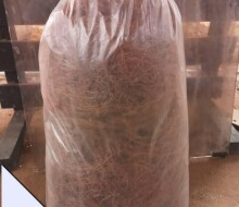 treated-coconut-fiber-mesh-for-biofil-digester-treatment-for-sale-small-2